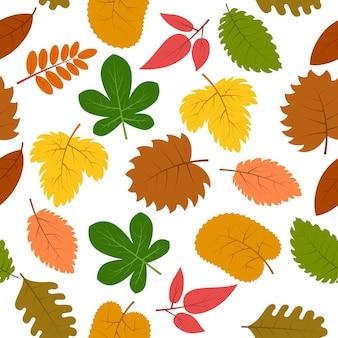 Naadloze patroon met herfstbladeren. vector illustratie.