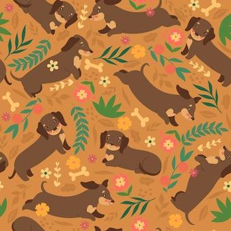 Naadloze patroon met teckels honden. vectorafbeeldingen.