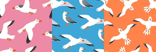 Naadloze patroon set van zeevogels, atlantische meeuwen