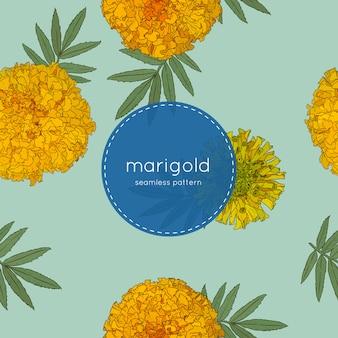 Naadloze patroon van goudsbloem bloem.