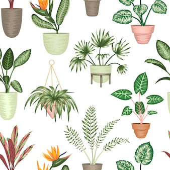 Naadloze patroon van tropische kamerplanten in potten geïsoleerd. heldere realistische strelitzia, monstera, alocasia, dieffenbachia, cordyline.