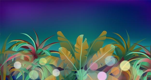 Nacht achtergrond van de jungle