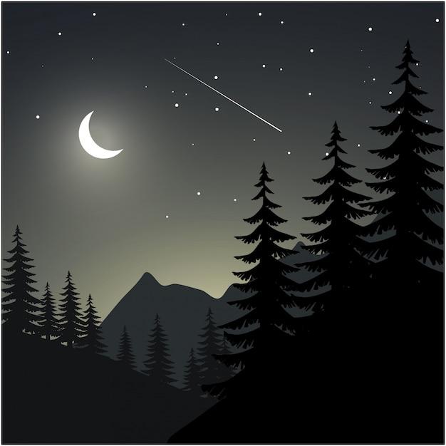 Nacht illustratie met pijnboom silhouet, berg, maan en sterren