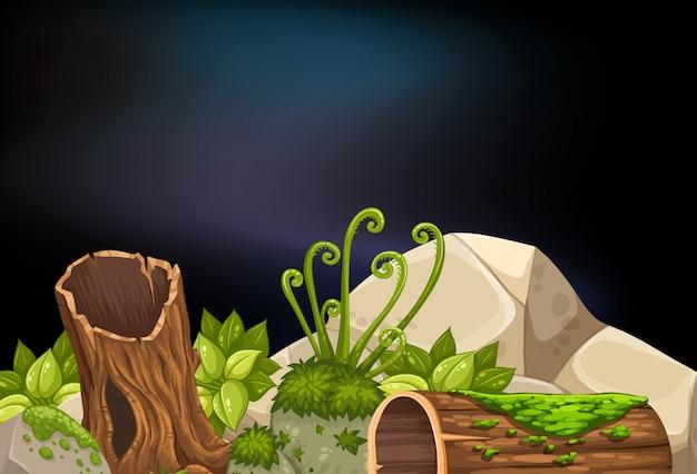 Nachtscène met logboeken en rotsen