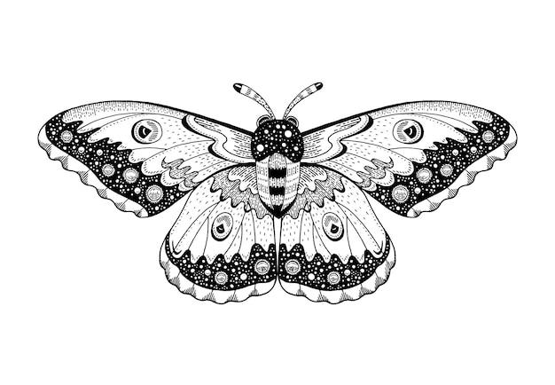 Nachtvlinder tattoo hemelse occulte maan schetsontwerp