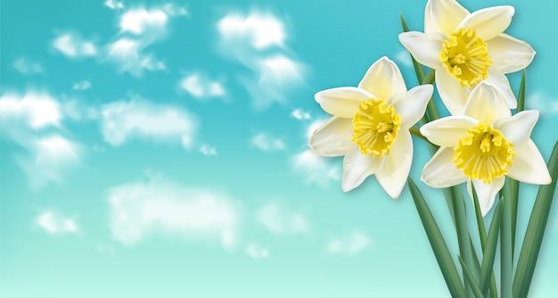 Narcis van de de lentekaart bloeit boeket