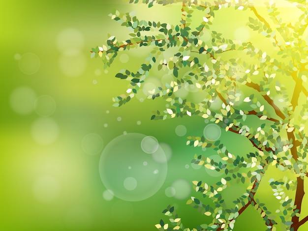Natuur achtergrond met groene verse bladeren.