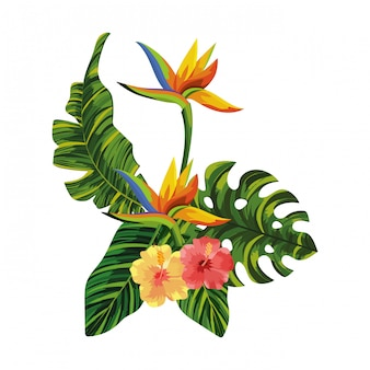 Natuur bloemen cartoon