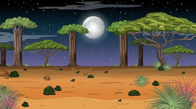 Natuur boslandschap bij nachtscène