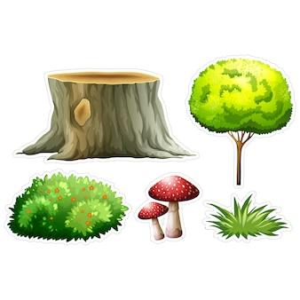 Natuur elementen collectie