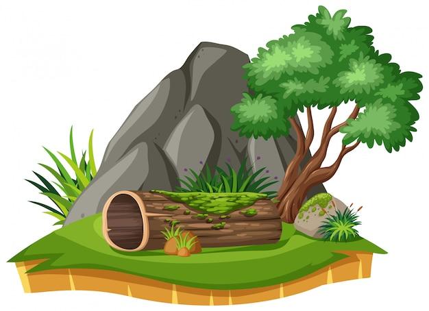 Natuur landschap van park met log en boom