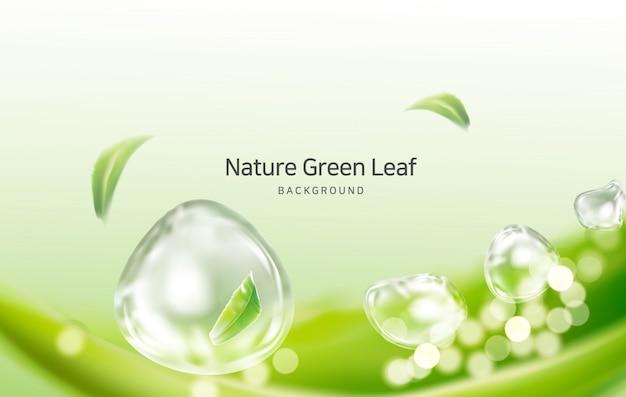 Natuur, schone lucht lente bladeren