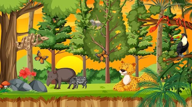 Natuurbos bij zonsondergangtijdscène met wilde dieren