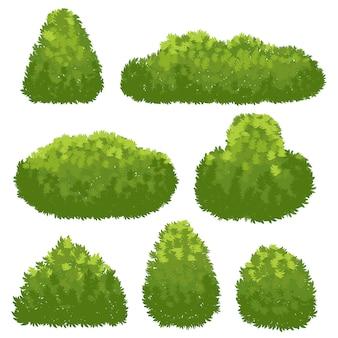 Natuurhaag, tuin groene struiken.