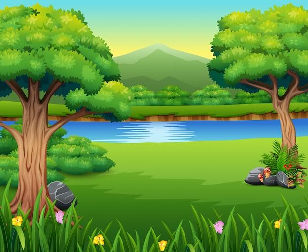 Natuurlandschap met een prachtig park en een berg