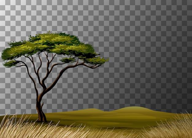 Natuurlandschapsscène op transparante achtergrond