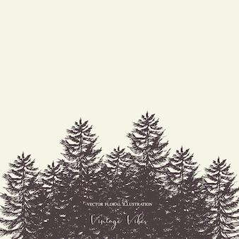 Natuurlijk bos set van groenblijvende bomen