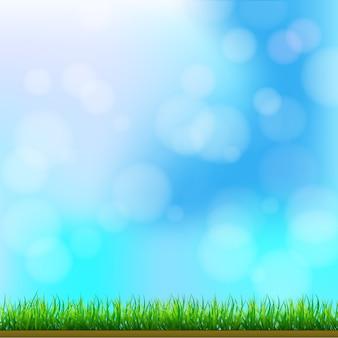 Natuurlijk groen gras