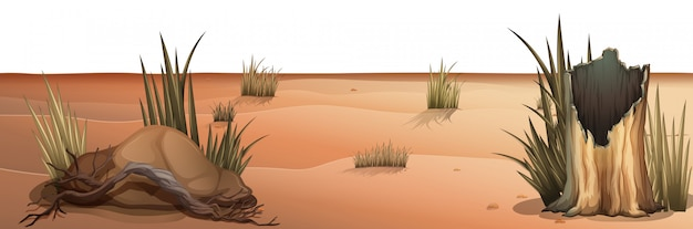 Natuurlijke omgeving lanscape scène