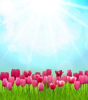 Natuurlijke zonnige achtergrond
