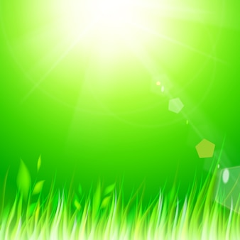 Natuurlijke zonnige achtergrond.