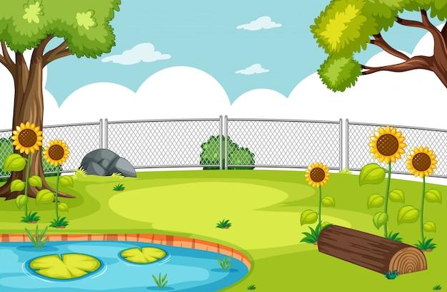 Natuurpark met moeras en zonnebloemen scène
