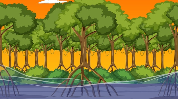 Natuurscène met mangrovebos bij zonsondergang in cartoonstijl