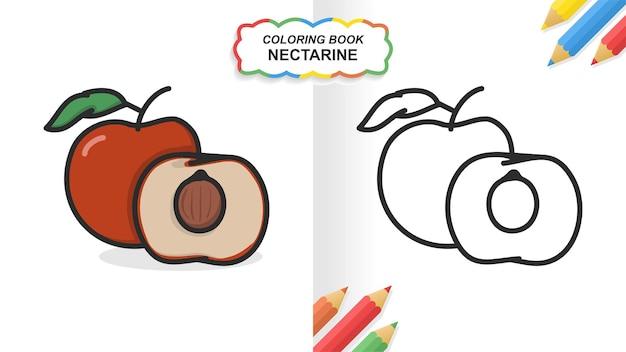 Nectarine fruit hand getekend kleurboek om te leren. egale kleur klaar om af te drukken