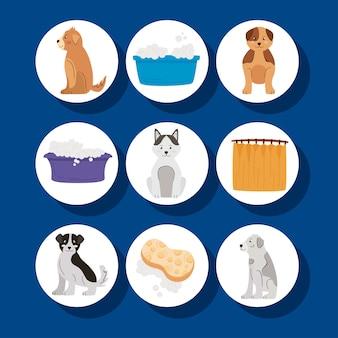 Negen wassen huisdieren instellen pictogrammen