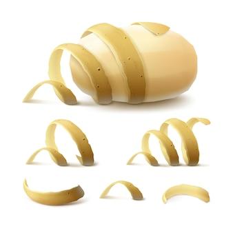 Nieuwe gele rauwe hele geschilde aardappel met gedraaide schil