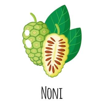 Noni superfood fruit voor sjabloon boerenmarkt ontwerp, etiket en verpakking. natuurlijke energie-eiwit biologische voeding.