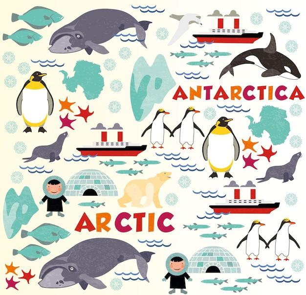 Noordpatroon met arctisch en antarctica