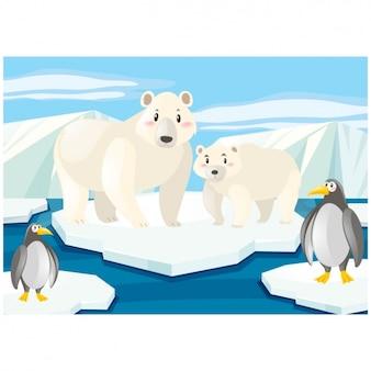 Noordpool achtergrond ontwerp