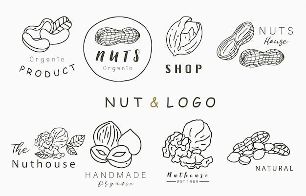 Noten collectie logo met hazelnoot, walnoot, pinda. vectorillustratie voor pictogram, logo, sticker, afdrukbare en tatoeage