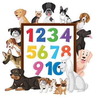 Nummer 0 tot 9 op banner met veel verschillende soorten honden