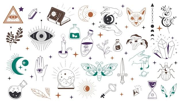 Occultisme en mystieke symbolen, geïsoleerd oog en driehoek, kruiden en magische boeken, drankjes en dieren
