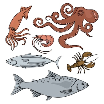 Ocean life zee dieren gezonde zeevruchten