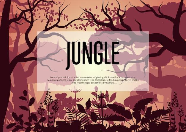 Ochtend tropische jungle sjabloon achtergrond