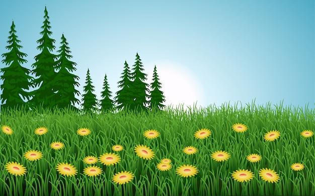 Ochtendtijd in grasveld