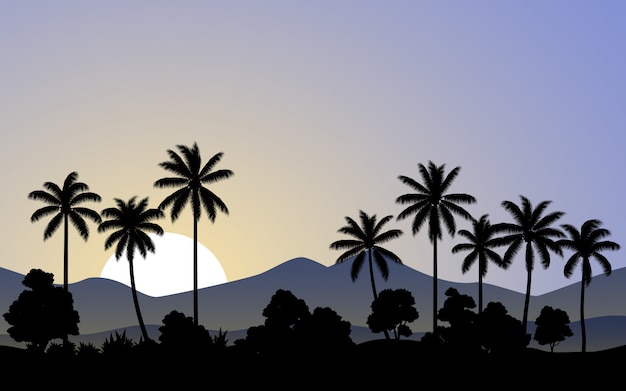 Ochtendtijd in palmbos