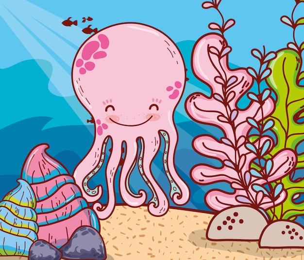 Octopus dier met schelpen en zeewier planten