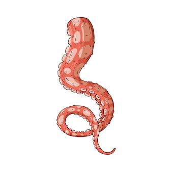 Octopus of inktvis tentakel schets pictogram
