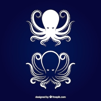 Octopus pictogram