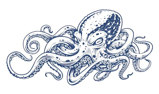 Octopus vintage gravure stijl vectorillustratie van octopus.