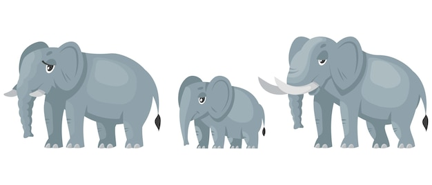Olifantenfamilie karakters. afrikaanse dieren in cartoon-stijl.