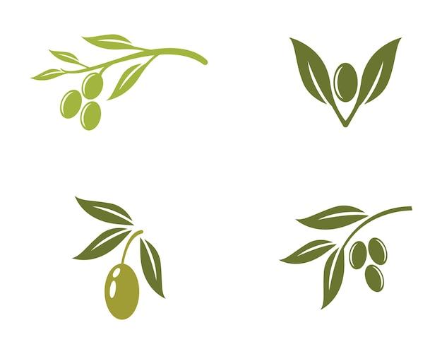 Olijf logo sjabloon vector pictogram