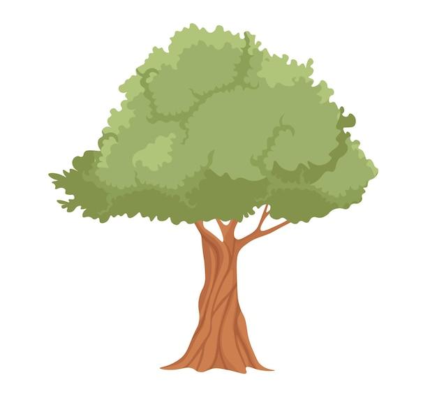 Olijfboom met krachtige stam en takken met groene bladeren. uitgestrekte plant voor olijfolie-extractie, label voor natuurlijke vegetarische productie. eco food store geïsoleerde vectorillustratie, icon