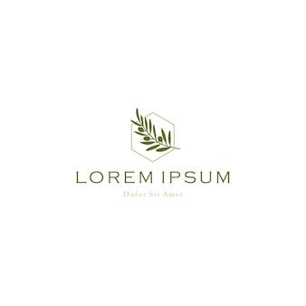 Olijfolie boomtak logo vector pictogram illustratie
