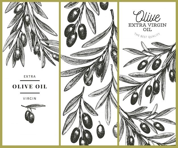 Olive branch sjabloon. hand getekend voedsel illustratie. gegraveerde stijl mediterrane plant. retro botanisch beeld.