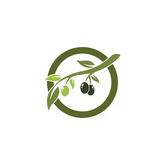 Olive logo sjabloonontwerp